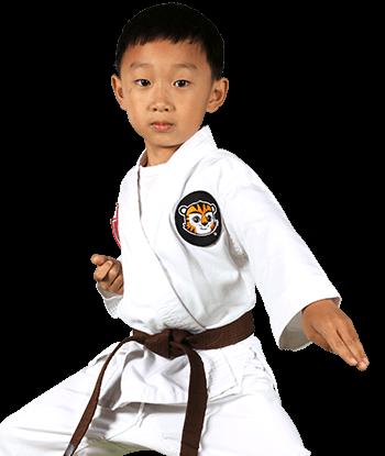 ATA Martial Arts Wyomissing ATA Martial Arts - ATA Tigers